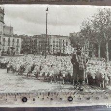 Fotografía antigua: VALLADOLID.- ACADEMIA DE CABALLERÍA, EL MONUMENTO A LOS HEROES DE ALCÁNTARA. TRASHUMANCIA. Lote 195738965