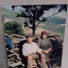 Fotografía antigua: 1986 FOTO POPULAR LUGO ENOGRAFIA GALLEGA. Lote 196271131
