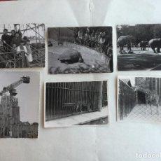 Fotografía antigua: VISITAS AL PARQUE DE ATRACCIONES DEL TIBIDABO Y AL ZOO DE BARCELONA. 6 FOTOS. AÑOS 50. Lote 197770025