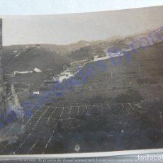 Fotografía antigua: FOTOGRAFÍA ANTIGUA. PAISAJE DE CANARIAS (8 X 6 CM). Lote 207082177