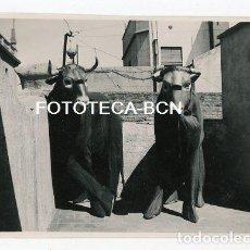 Fotografía antigua: FOTO ORIGINAL PERSONAS DRIFRAZADAS DE TORO AÑOS 30/40 POSIBLEMENTE BARCELONA. Lote 208355660