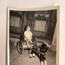 Fotografía antigua: NIÑOS, FOTOGRAFÍA ANTIGUA.., CON MI CABALLO TROTON (H.1960?) MISLATA, FOTOGRAFÍA B. EGIDO. Lote 222386027