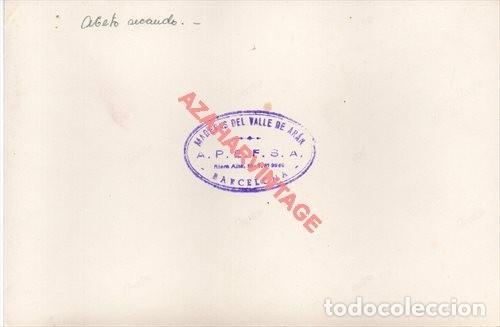 Fotografía antigua: MADERAS DEL VALLE DE ARAN.APEFSA.12X18.SOBRE 1960.SERRERIA DE BOSOST.ABETO SECANDO.LERIDA - Foto 2 - 223453206