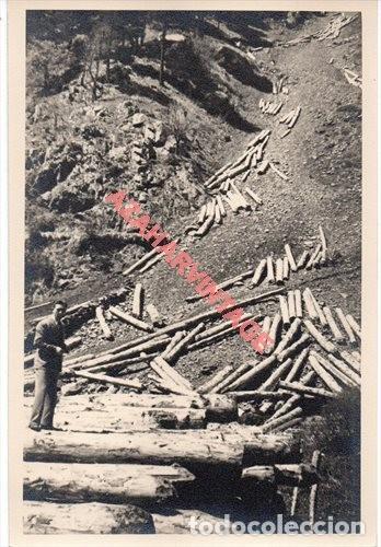 MADERAS DEL VALLE DE ARAN.APEFSA.12X18.SOBRE 1960.SERRERIA DE BOSOST.SACA DE PINO SILVESTRE (Fotografía Antigua - Fotomecánica)