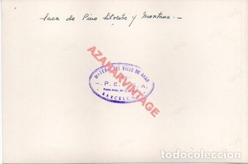 Fotografía antigua: MADERAS DEL VALLE DE ARAN.APEFSA.12X18.SOBRE 1960.SERRERIA DE BOSOST.SACA DE PINO SILVESTRE - Foto 2 - 223453380