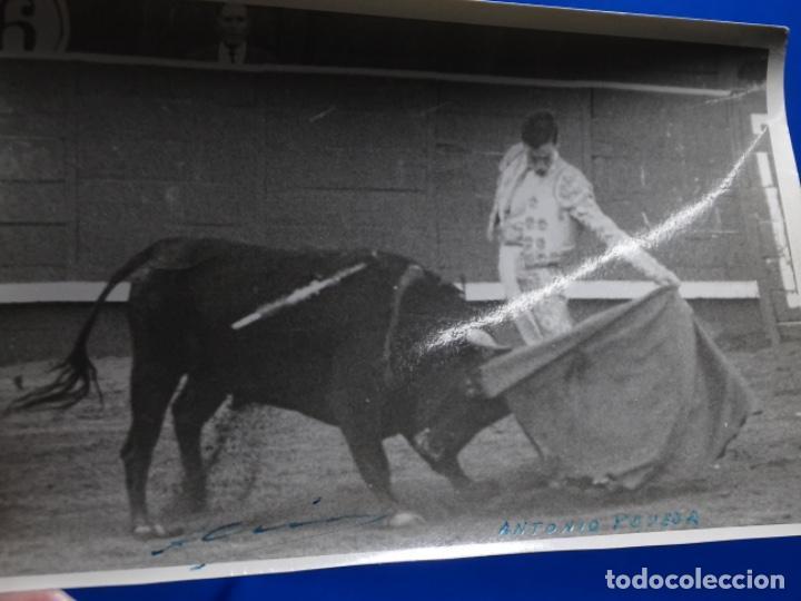 Fotografía antigua: 19 FOTOGRAFÍAS DE TOREROS ANTONIO POVEDA ETC.REPORTEROS CARRIÓN,VEGA,DELGADO,VILLAR,EDÉN,SOLSA... - Foto 22 - 233033985