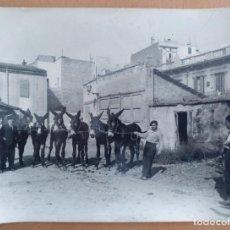 Fotografía antigua: FOTO DE RECULA DE MULAS Y TRATANTES PROBABLEMENTE EN BARCELONA. Lote 251341215