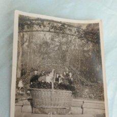 Fotografía antigua: ANTIGUA FOTOGRAFIA.JARDIN DEL PRINCIPE.ARANJUEZ 1929. Lote 268908994
