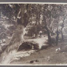 Fotografía antigua: FOTOGRAFIA TITULADA LEMA FONTADES AÑOS 30-40. Lote 288214758