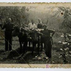Fotografía antigua: ARBUCIAS. LABORES DEL CAMPO. BONITA FOTO CIRCA 1945. GIRONA. Lote 26929193