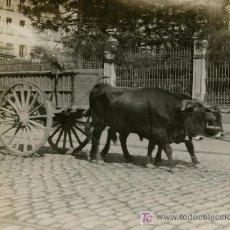 Fotografía antigua: MADRID. CARRO TIRADO POR BUEYES. CIRCA 1905. DELANTE DEL ANTIGUO MINISTERIO DE LA GUERRA.. Lote 27268137