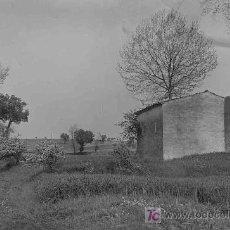 Fotografía antigua: CAMPO. ESPLÉNDIDO PAISAJE CON CAMPOS Y ÁRBOLES. POSIBLEMENTE VALLÉS. CIRCA 1930. Lote 22984345