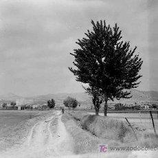 Fotografía antigua: ZONA DE BELLBITGE. L'HOSPITALET. BARCELONA. CICLISTA Y CAMPOS. CIRCA 1930. Lote 17614888