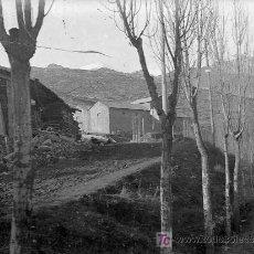 Fotografía antigua: PIRINEOS. PUERTO I CARRETERA CON ÁRBOLES. LUGAR SIN IDENTIFICAR. CIRCA 1910. Lote 20024182
