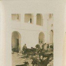 Fotografía antigua: VISTA DE OLERDOLA - BARCELONA - AÑO 1926 - 9 X 6,5 CM. Lote 26972535