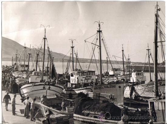 ALTEA (ALICANTE) GRAN FOTOGRAFIA DEL PUERTO, ENERO 1957 (Fotografía Antigua - Gelatinobromuro)