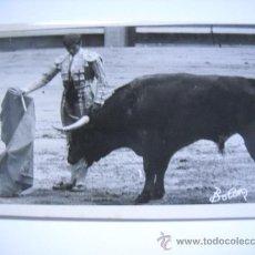 Fotografía antigua: (TOROS) FOTOGRAFIA DE EL CORDOBES TOREANDO. FOTOGRAFO BOTAN. TAMAÑO 18X12.. Lote 29717416