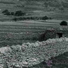 Fotografía antigua: MATARRAÑA. BECEITE. CALACEITE. PAISAJE Y MASÍAS. TERUEL. C. 1965. Lote 32224378