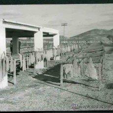 Fotografía antigua: SEGOVIA. SECADERO DE BACALAO. C. 1965. Lote 32327831