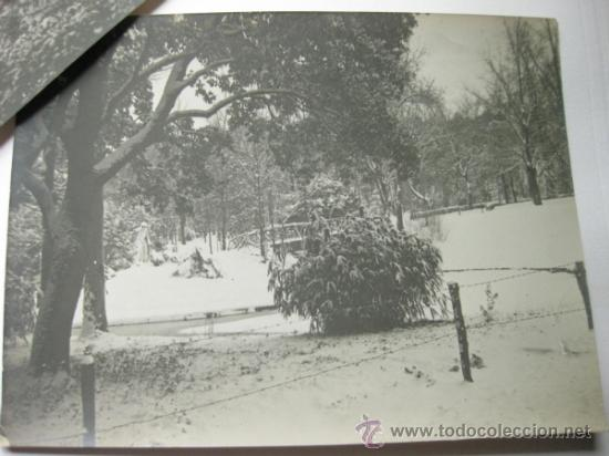 Fotografía antigua: PAREJA DE FOTOGRAFIAS DE MADRID - RETIRO O CAMPO DEL MORO - AÑOS 20 - Foto 3 - 37727802