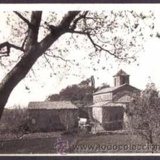 Fotografía antigua: MONTSENY. SANT MARTÍ DEL BRULL. 1/11/1931. Lote 37239182