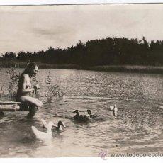 Fotografía antigua: NUDISMO - NATURISMO ALEMÁN, DESNUDO EN EL LAGO. FOTO: JOSEF BAYER, 9,5X12 CM.. Lote 37529843