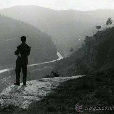 Fotografía antigua: CENTELLES. OSONA. SEÑOR OBSERVANDO LA CARRETERA.1/2/1959. Lote 41655745