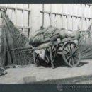Fotografía antigua: PUERTO DE BARCELONA. CARRUAJE Y REDES. CURIOSA FOTO. 10/1967. Lote 43743825