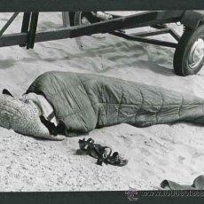 Fotografía antigua: PLAYA. TURISTA DURMIENDO. C. 1960. Lote 43890055