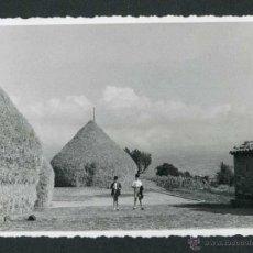 Fotografía antigua: PAJAR. NIÑOS. PREPIRINEO. 1951. Lote 44114292