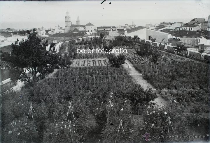 Fotografía antigua: Arenys de Mar, 1915s. Archivo de 450 cristales negativos del fotógrafo Joaquim Castells (1874-1941) - Foto 5 - 44337480
