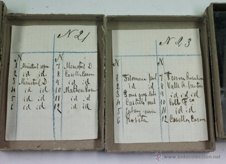 Fotografía antigua: Arenys de Mar, 1915s. Archivo de 450 cristales negativos del fotógrafo Joaquim Castells (1874-1941) - Foto 38 - 44337480