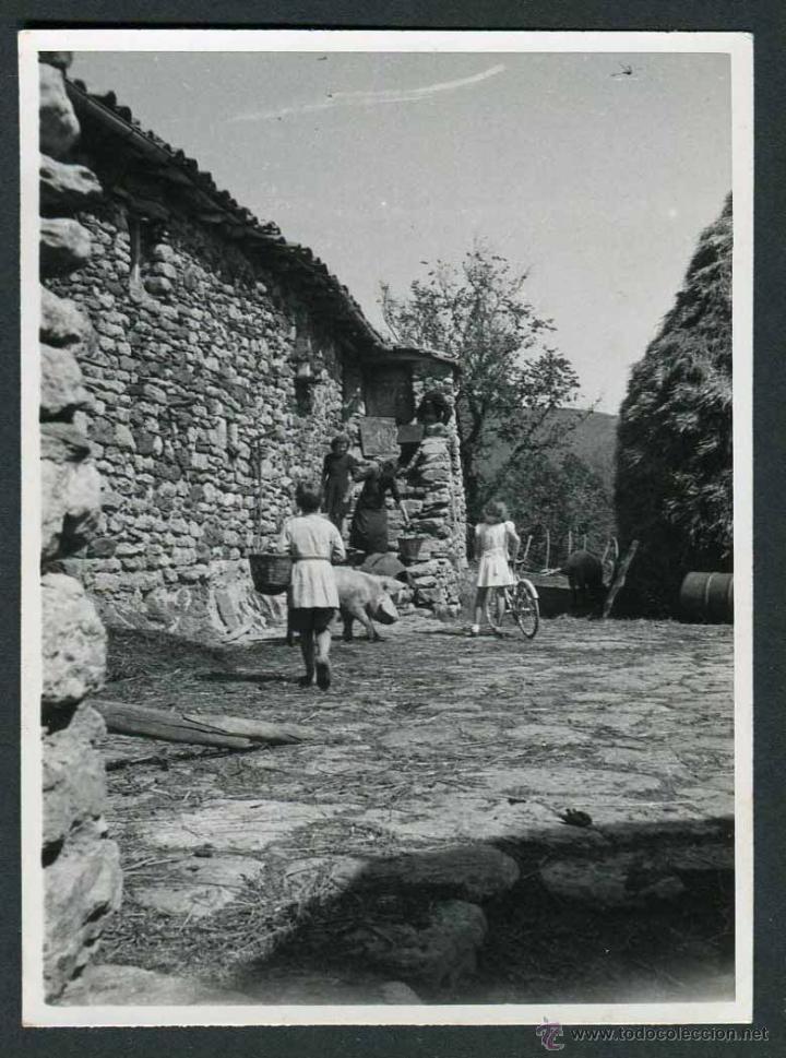 Camprodon Masia Ninos Jugando Y Cerdo C 193 Comprar Fotografia