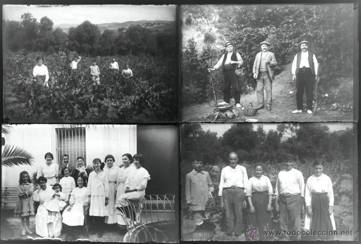 Fotografía antigua: Arenys de Mar, 1915s. Archivo de 450 cristales negativos del fotógrafo Joaquim Castells (1874-1941) - Foto 109 - 44337480