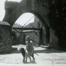 Fotografía antigua: GARRAF. BODEGAS GUELL. SEÑORA Y PERRO. C. 1930. Lote 48425726