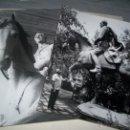 Fotografía antigua: 2 FOTO TALLER ESCULTOR JUAN DE AVALOS SHA DE PERSIA A CABALLO 1971 TEHERAN IRAN. Lote 48743885