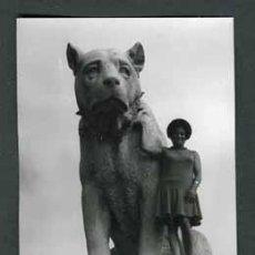 Fotografía antigua: BURGOS. PANCORBO. MONUMENTO AL PASTOR. 1971. Lote 54446093