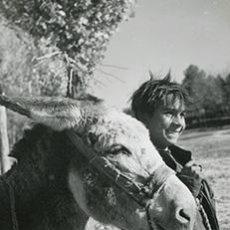 Fotografía antigua: GITANILLO CON BURRITO. CARRETERA MADRID TOLEDO. 17 NOV. 1955. Lote 64188043