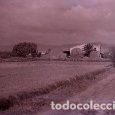 Fotografía antigua: BAIX LLOBREGAT. CAMPOS Y MASÍA. C. 1930. Lote 77876197