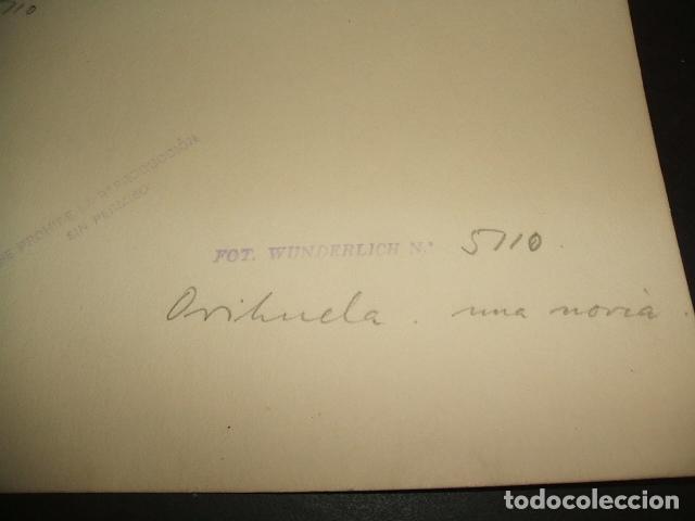 Fotografía antigua: ORIHUELA ALICANTE UNA NORIA OTTO WUNDERLICH FOTOGRAFO DECADA 1920 - Foto 2 - 81559804