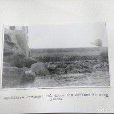 Fotografía antigua: FOTOGRAFIA SOBRE CARTON DE AGUILAS, MURCIA, AÑOS 40/50, VER PIE DE FOTO. Lote 99515931