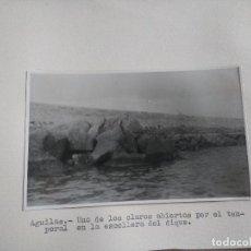 Fotografía antigua: FOTOGRAFIA SOBRE CARTON DE AGUILAS, MURCIA, AÑOS 40/50, VER PIE DE FOTO. Lote 99515999