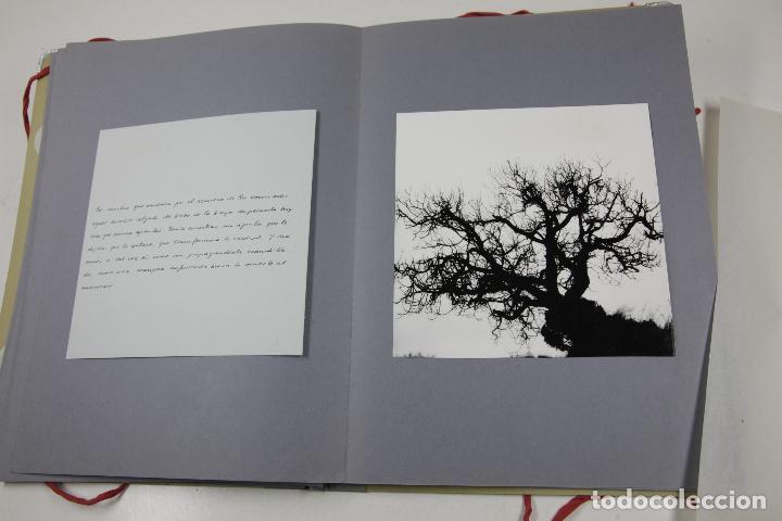 Fotografía antigua: HABANERA - COLITA - ANA MARIA MOIX - PORFOLIO CON 10 FOTOGRAFÍAS Y TEXTOS. AÑO 1974 - Foto 5 - 111221571