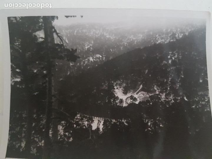CERCEDILLA NEVADO TOMADA POR INGENIERO FORESTAL MADRID FOTOGRAFIA AÑOS 50 (Fotografía Antigua - Gelatinobromuro)