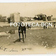 Fotografía antigua: FOTO ORIGINAL PLAYA CASETAS BAÑITAS PERRO POSIBLEMENTE SANT VICENÇ DE MONTALT CATALUNYA AÑOS 20. Lote 141665206