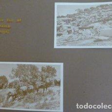 Fotografía antigua: CARTAMA MALAGA FERIA DE GANADO 2 FOTOGRAFIAS POR EMBAJADOR BRITANICO EN ESPAÑA JOHN BALFOUR 1951. Lote 155822346