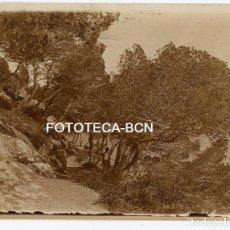 Fotografia antica: FOTO ORIGINAL CAMINO EN LAS INMEDIACIONDES DE LAS CUEVAS DE ARTÁ MALLORCA AÑOS 20 BALEARES. Lote 161362146