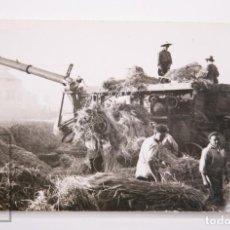 Fotografía antigua: ANTIGUA FOTOGRAFÍA - TRABAJADORES DEL CAMPO EN SANT ADRIÀ / TRILLADO, BARCELONA - AÑO 1950. Lote 167301484