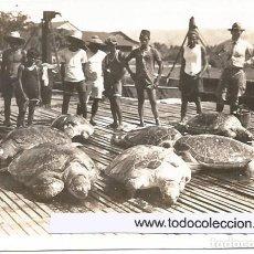 Fotografía antigua: ZAMBOANGA-FILIPINAS. Lote 194220562