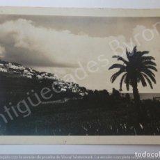 Fotografía antigua: FOTOGRAFÍA ANTIGUA. ICOD. TENERIFE. SELLO BAENA (18 X 13 CM). Lote 194725301